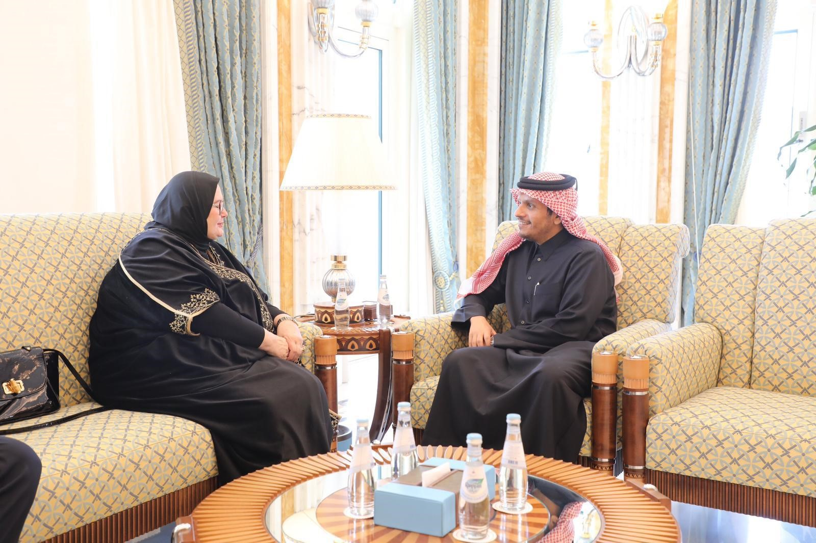 Deputy Prime Minister and Minister of Foreign Affairs Meets Ambassador of Bosnia and Herzegovina