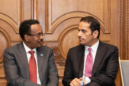 نائب رئيس مجلس الوزراء وزير الخارجية يلتقي الرئيس الصومالي