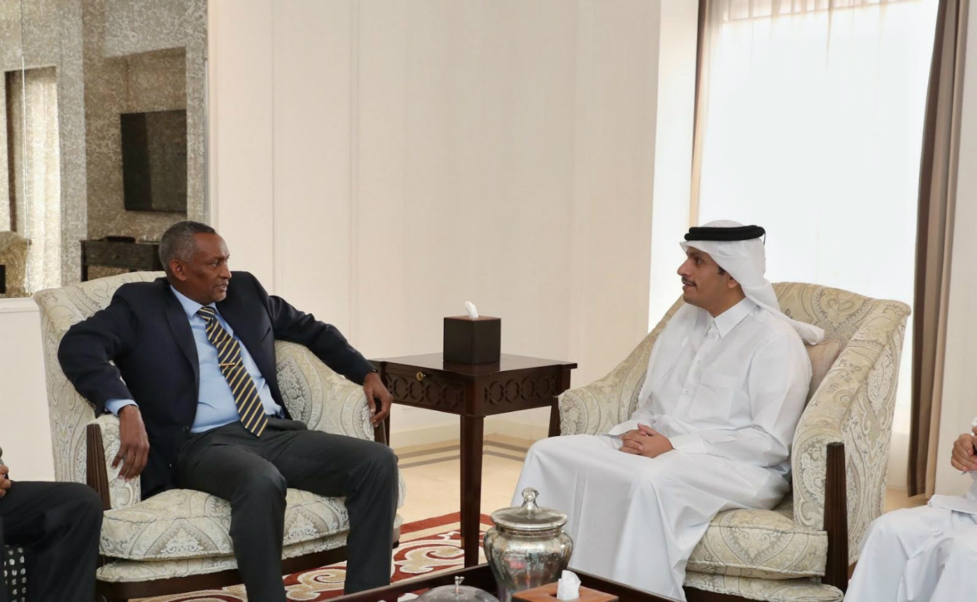 Deputy Prime Minister and Minister of Foreign Affairs Meets IGAD Excutive Secretary