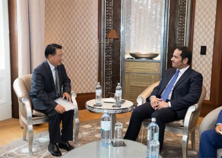 نائب رئيس مجلس الوزراء وزير الخارجية يجتمع مع المدير العام لمنظمة الأمم المتحدة للتنمية الصناعية