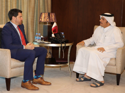 Deputy Prime Minister and Foreign Minister Meets US Congress Member
