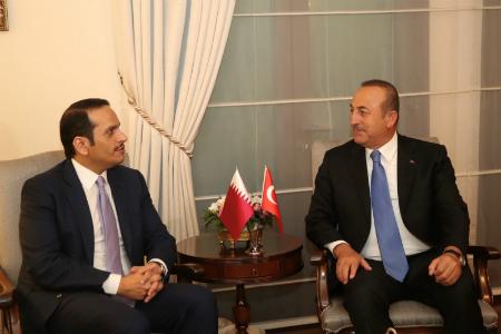 نائب رئيس مجلس الوزراء وزير الخارجية يجتمع مع وزير الخارجية التركي