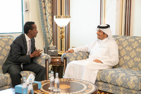 Deputy Prime Minister and Minister of Foreign Affairs Meets Somalia's Minister of Foreign Affairs