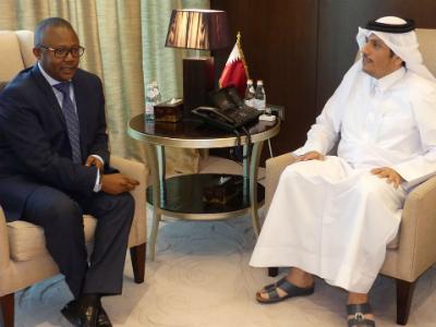 وزير الخارجية يجتمع مع رئيس وزراء غينيا بيساو