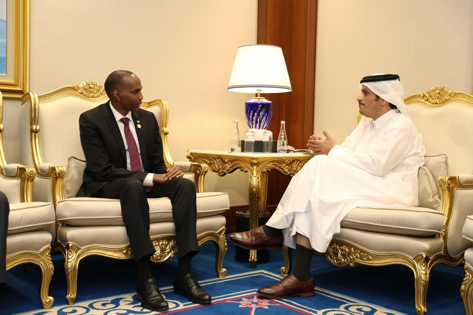 Deputy Prime Minister and Minister of Foreign Affairs Meets Somali Prime Minister