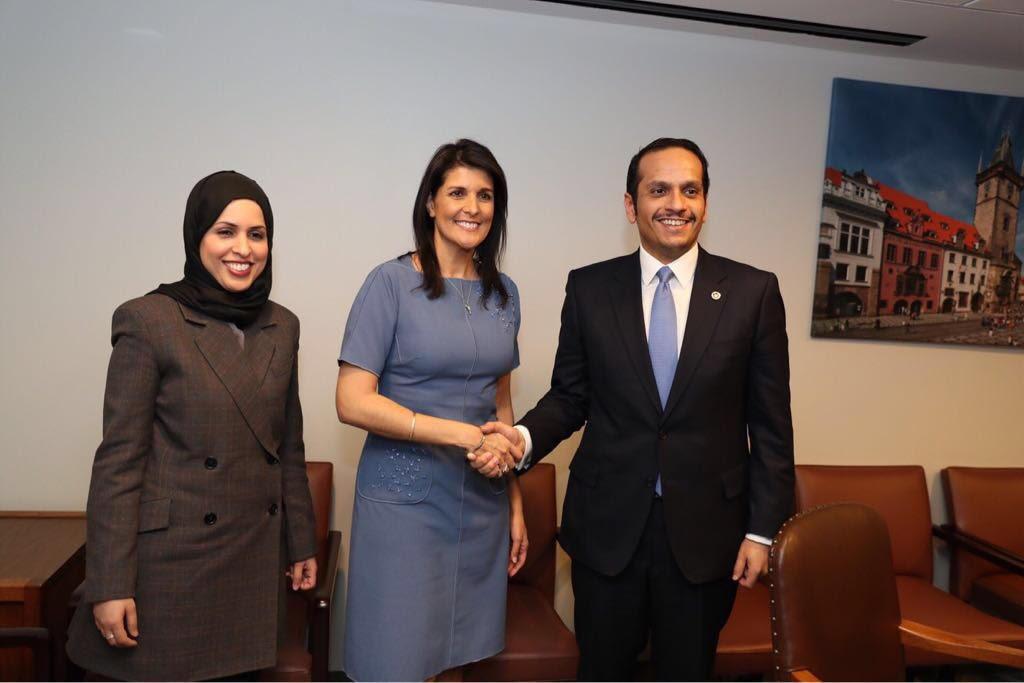 نائب رئيس مجلس الوزراء وزير الخارجية يجتمع مع المندوب الدائم للولايات المتحدة لدى الأمم المتحدة