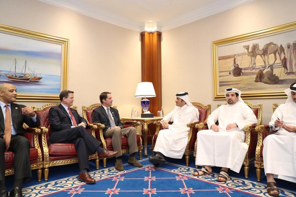 نائب رئيس مجلس الوزراء وزير الخارجية يجتمع مع وفد من الكونغرس الأمريكي