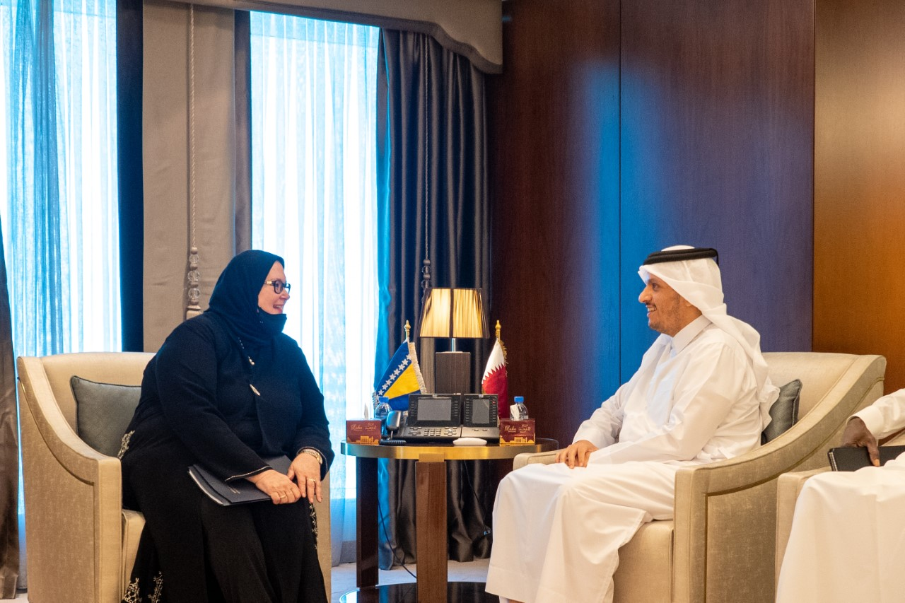 Deputy Prime Minister and Minister of Foreign Affairs Meets Bosnia and Herzegovina Counterpart