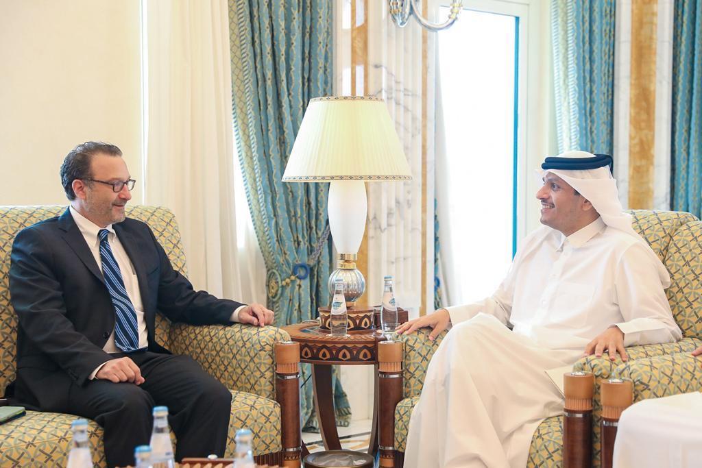 نائب رئيس مجلس الوزراء وزير الخارجية يجتمع مع مساعد وزير الخارجية الأمريكي