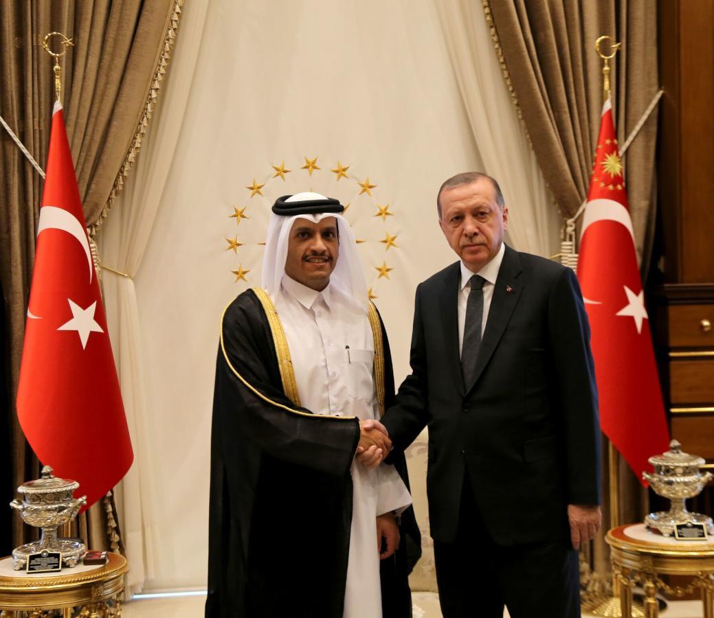 الرئيس التركي يستقبل وزير الخارجية