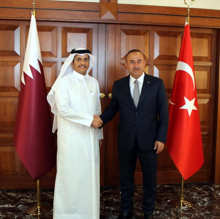 وزير الخارجية يجتمع مع نظيره التركي