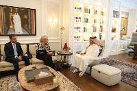 Deputy Prime Minister and Minister of Foreign Affairs Meets UN Special Representative in Iraq