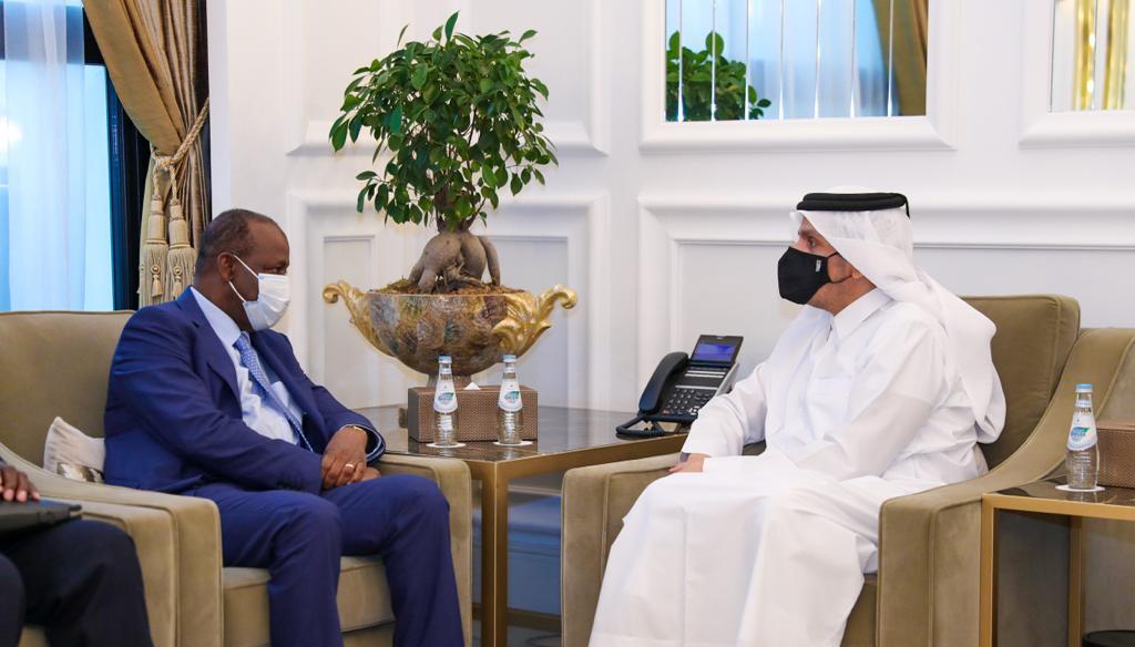 نائب رئيس مجلس الوزراء وزير الخارجية يجتمع مع وزير خارجية كوت ديفوار