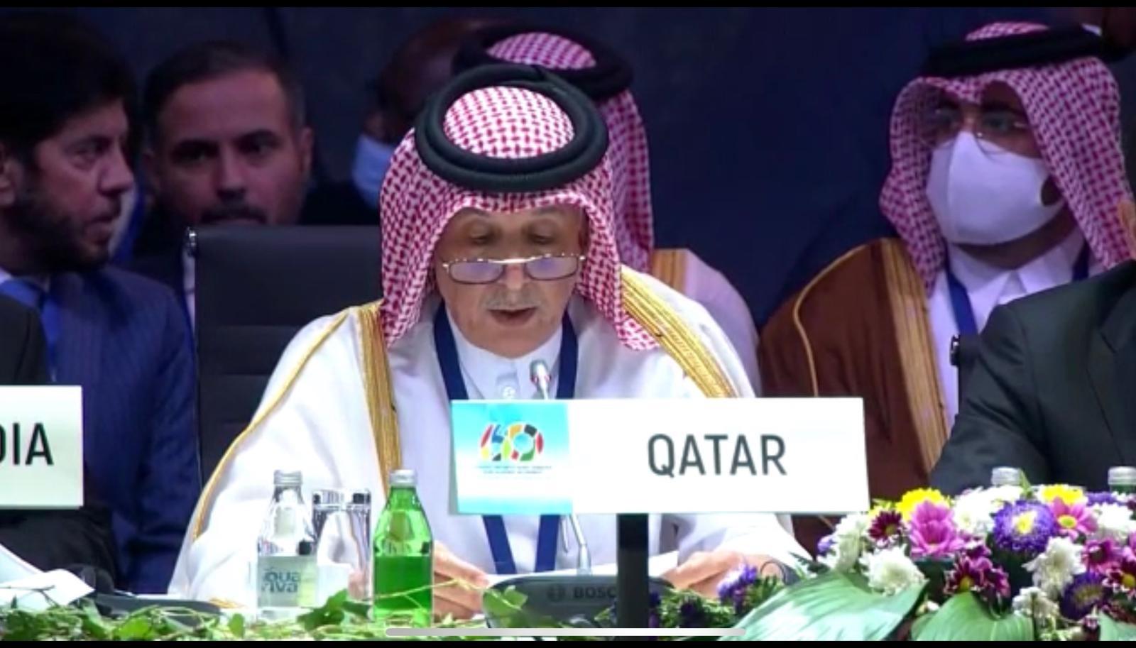 قطر تؤكد حرصها على أن تكون عضوا فاعلا في حركة عدم الانحياز
