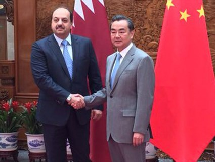 HE Foreign Minister Meets Chinese Counterpart