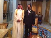 Somali President Meets Charge D'affaires of Qatar's Embassy