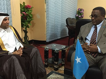 Qatar, Somalia Discuss Bilateral Ties