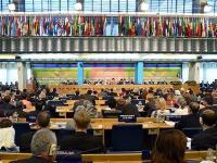 Qatar Elected Member in FAO General Council