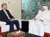 Foreign Minister's Assistant Meets Iran Deputy FM