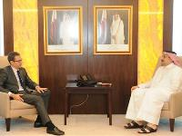 HE Foreign Minister Meets French President Adviser