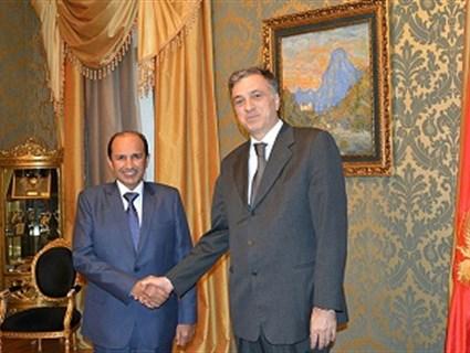 رئيس جمهورية الجبل الأسود يتسلم أوراق اعتماد سفير قطر