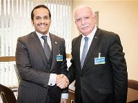 Foreign Minister Meets Palestinian Counterpart, President of the Human Rights Council