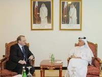 Assistant FM for Foreign Affairs Meets Russian President's Special Envoy
