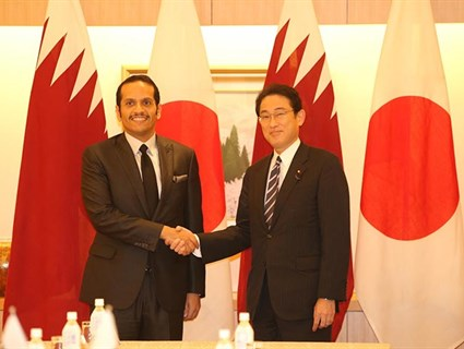 HE Foreign Minister, Japanese FM Discuss Ways to Strengthen Strategic Partnership
